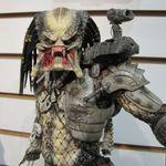 Predator 04 (1024x1024).jpg