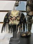 Predator 05 (768x1024).jpg