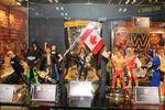 Mattel WWE (4) (1280x853).jpg