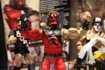 Mattel WWE (12) (1280x853).jpg