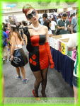 sdcc2013day4086
