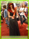 sdcc2013day4130