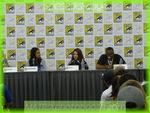 sdcc2013day4150
