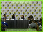 sdcc2013day4151