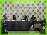 sdcc2013day4152