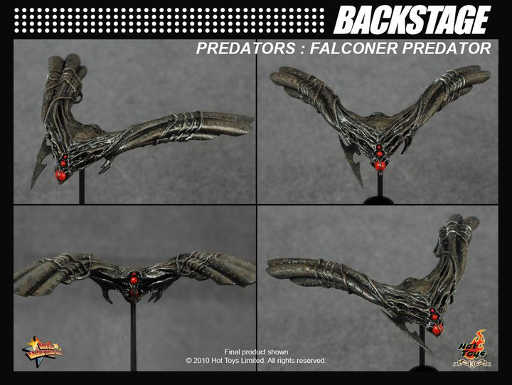 Amid high anticipation, here's the backstage of the Falconer Predator